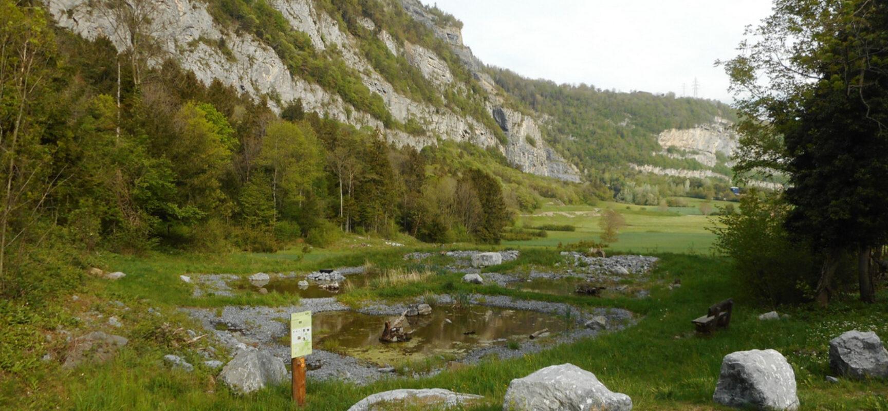 St. Moritz VS (St-Maurice): Wildtierpassage unter Autobahn aufgewertet